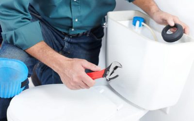 Toilet Repairs/Replacement FAQs: How Long Does It Take to Replace a Toilet?