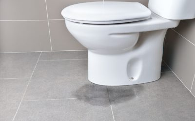 Why Is My Toilet Leaking?: 5 Common Causes of a Leaky Toilet (and What to Do About it!)